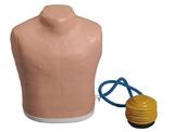 气胸处理模型 型号:SJ-Q7
