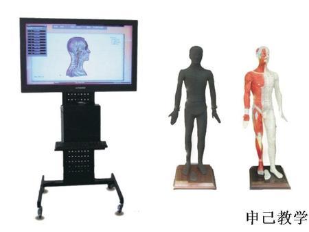 55寸多媒体人体针灸穴位交互数字平台 型号:SJ/WST55M
