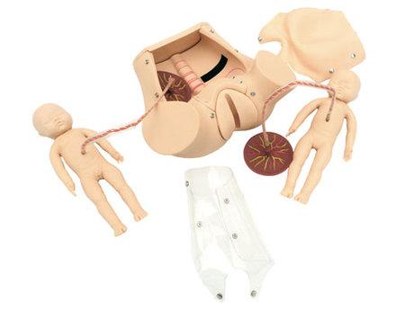 高级分娩综合示教模型 型号:SJ/5A