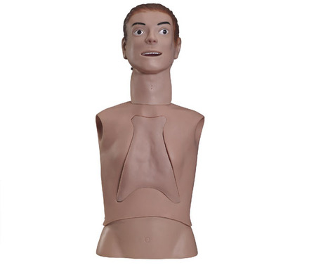 高级鼻饲管与气管护理模型 型号:SJ/80