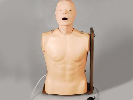 高级鼻胃管与气管护理模型 型号:SJ/81