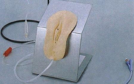高级着装式女性导尿模型 型号:SJ-28F