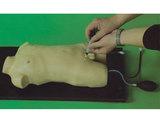 儿童股静脉与股动脉穿刺训练模型 型号:SJ-H3218
