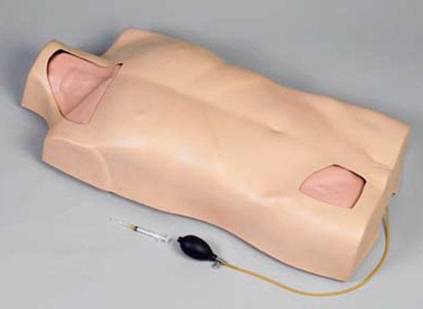 中心静脉穿刺注射躯干训练模型 型号:SJ-L68A