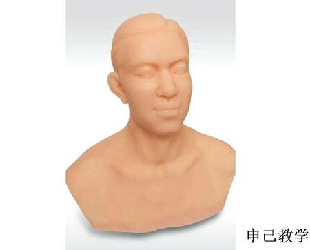 针灸头部训练模型 型号:SJ/MJ-T