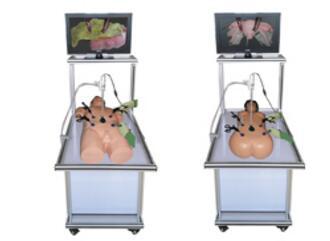 腹腔镜手术技能训练人体模型 型号:SJ/QJ600
